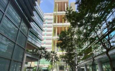 """CNRS@CREATE in Singapore: """"In one year, we have shown that we are on the right track"""""""